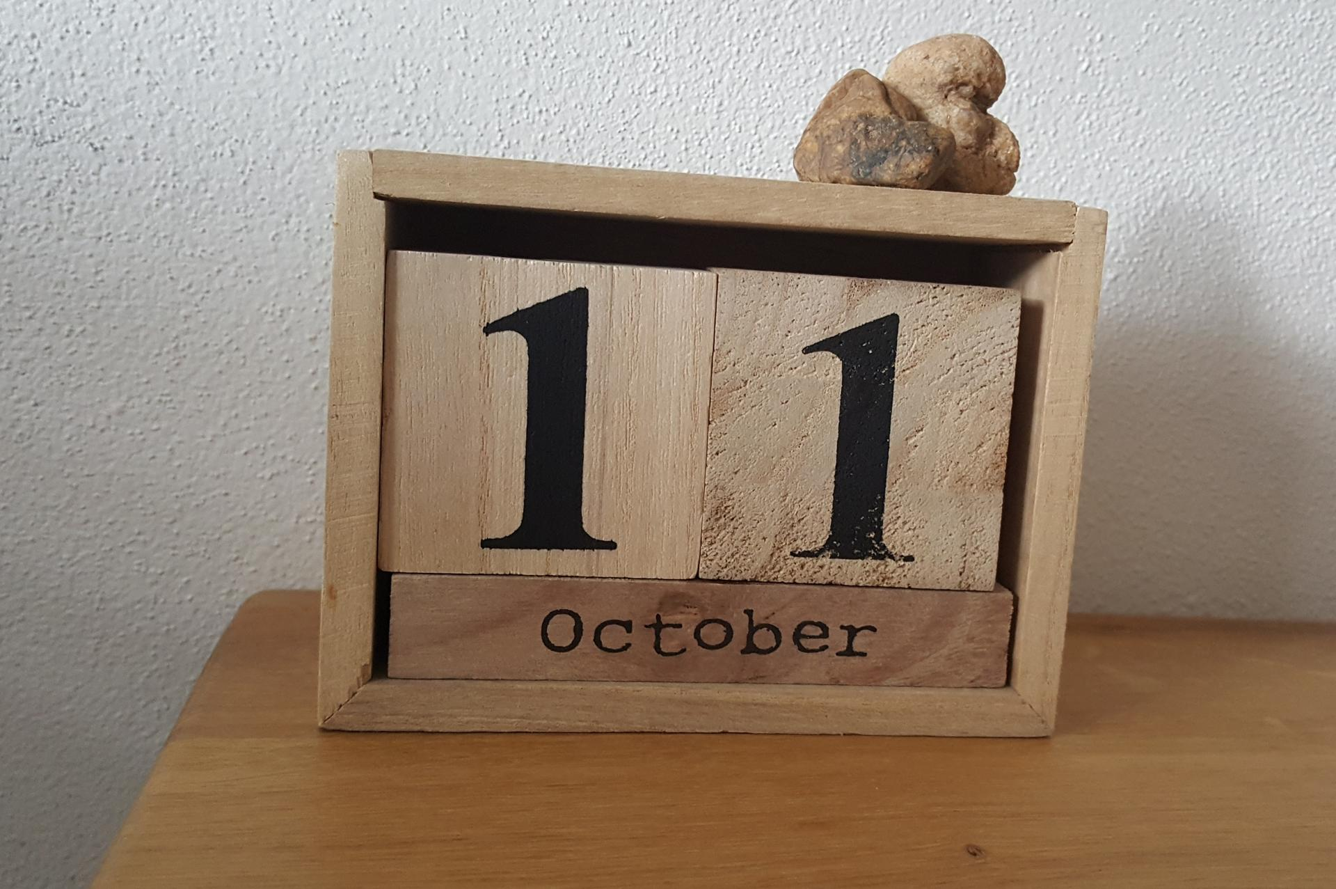 11.10.2020 / 11.10.2017 = před třemi lety jsme poprvé navštívili náš dům (v té době plesnivou kůču..). Mám tenhle datum ráda 🤗 - Obrázek č. 1