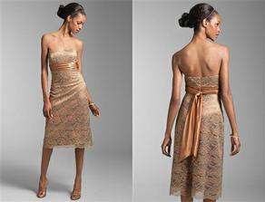 Tyto šaty jsou inspirací pro mé šaty na převlečení