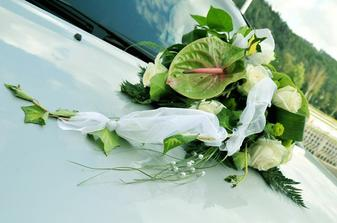 naše kytička na tatínkově autě.....