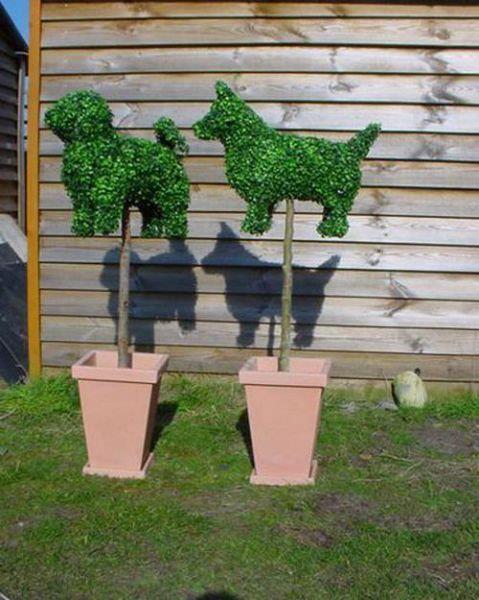 Kreatívne záhrady - Obrázok č. 2