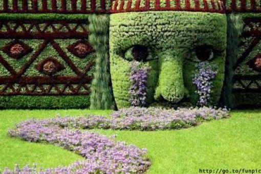 Kreatívne záhrady - Obrázok č. 44