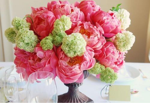 Výzdoba, dekorácie, kvetiny ... - Obrázok č. 45