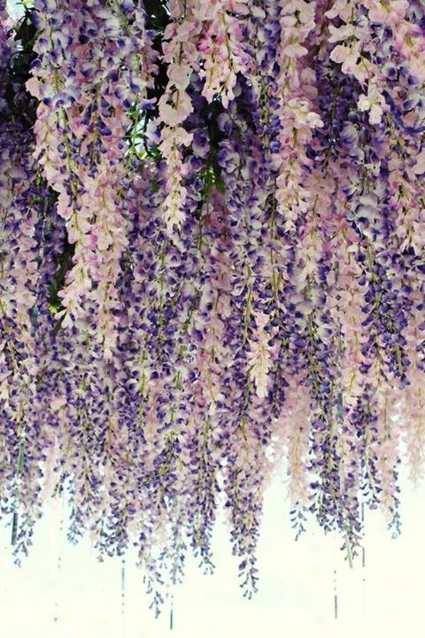 Výzdoba, dekorácie, kvetiny ... - Obrázok č. 48