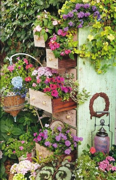 Záhrady - Obrázok č. 6