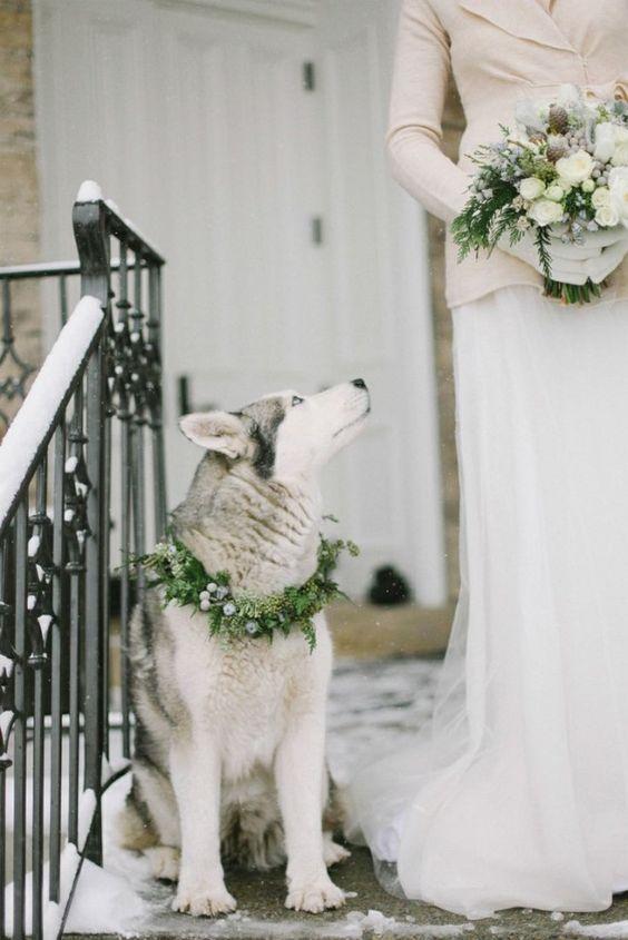 Čarovná zimná svadba - Obrázok č. 24