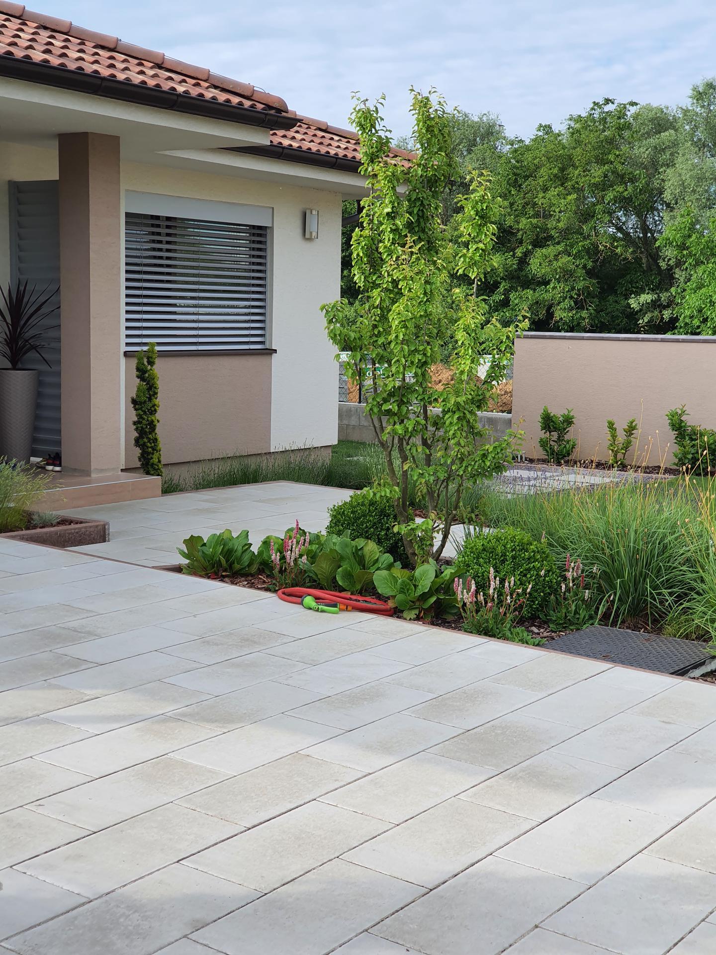 Zahrada 2021 - Obrázok č. 15