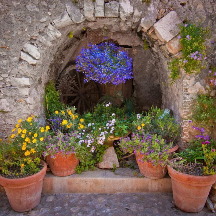 Provence - Obrázok č. 5