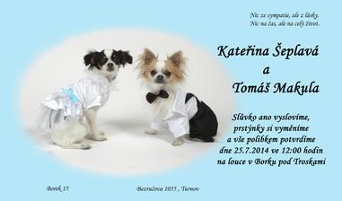 Tak už je doma naše krásný oznámení s našima mazlíčkama.
