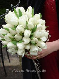 Zuzka & Peťo 18.10.2008 - Ach tie tulipany...:)