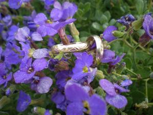 Tohle se mi úplně neplánovaně povedlo dnes ráno - naše prstýnky s ranní rosou na kytičkách...