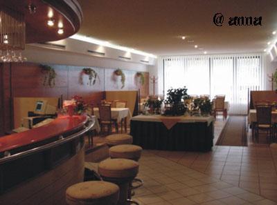 Anna a Stanislav - tu bude hostina...Hotel Brezina TN