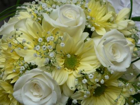 Katika{{_AND_}}Branko - A toto bola moja kvetica