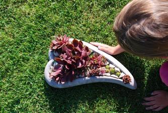 """""""věčná kytka"""", kousek mojí zahrady, kterou měla ráda, na hrob babičce, která mi odešla v březnu..."""