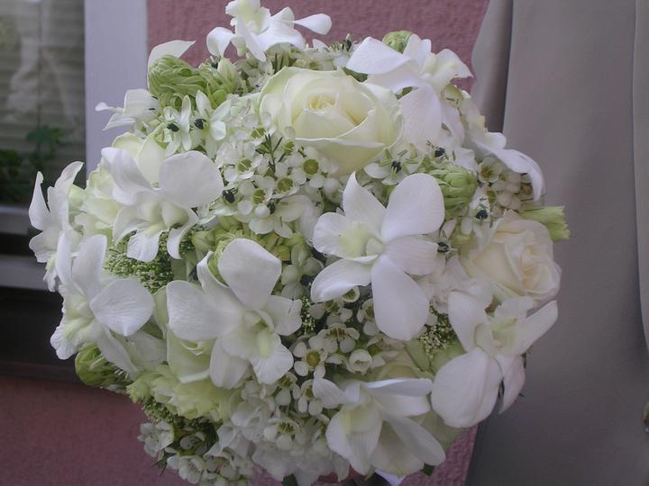 Zelená svatba - Obrázek č. 5