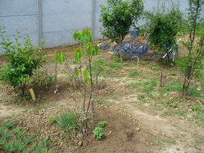 Aj zahradka musi byt