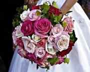 Vysnívaná svadba - Obrázok č. 41