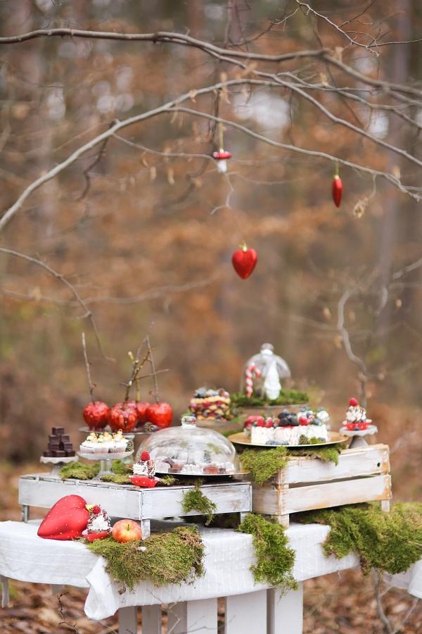 Naše vianočné rošošo :) Bez snehu ale so Snehulienkou - Obrázok č. 5