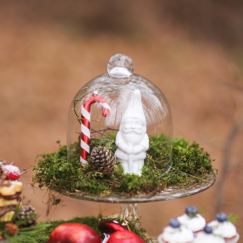 Naše vianočné rošošo :) Bez snehu ale so Snehulienkou - tak posledná trpazlíková:) jeden statočný zo siedmich
