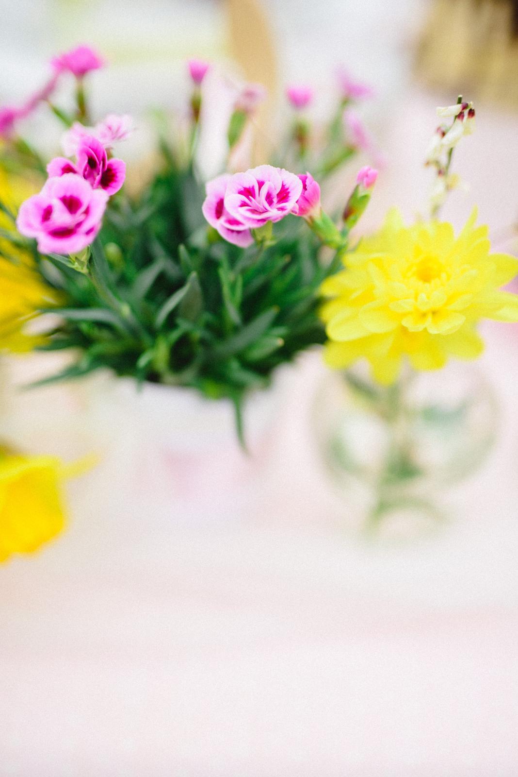 Jarné rande foto - moja srdcová záležitosť a hobby :) - Obrázok č. 17