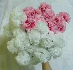 Můj dnešní úlovek z Tesca! Umělé kytky jsem nejdřív odmítala, ale těmhle se nedalo odolat. Alespoň si vyzkouším, jestli se mi bude hodit víc bílá nebo růžová kytice. :-)