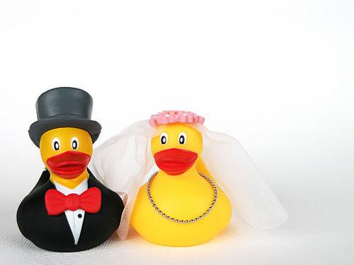 Moje predstavy :) - Milujem rubber duckies :))) tieto už mám doma :)