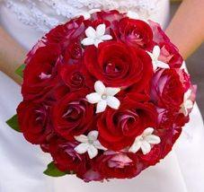 také krásná kyti