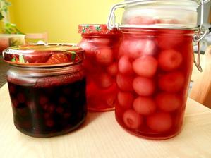 kompotované třešně, borůvky, jahody, meruňky...