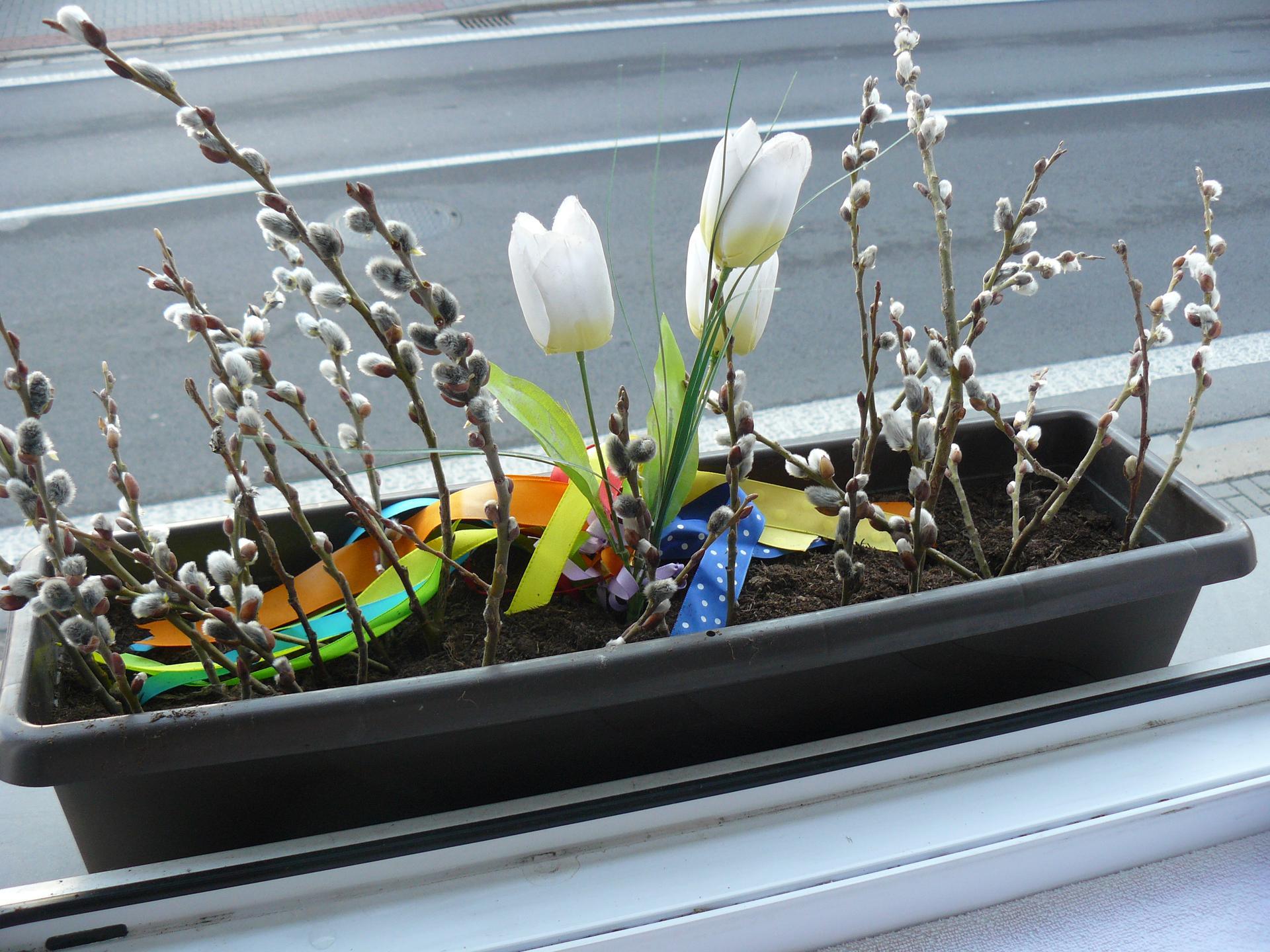 Domov 2020 - Kuchyňské okno. Trošku jaro - počasí je nevyzpytatelné, tak zatím umělá květina.
