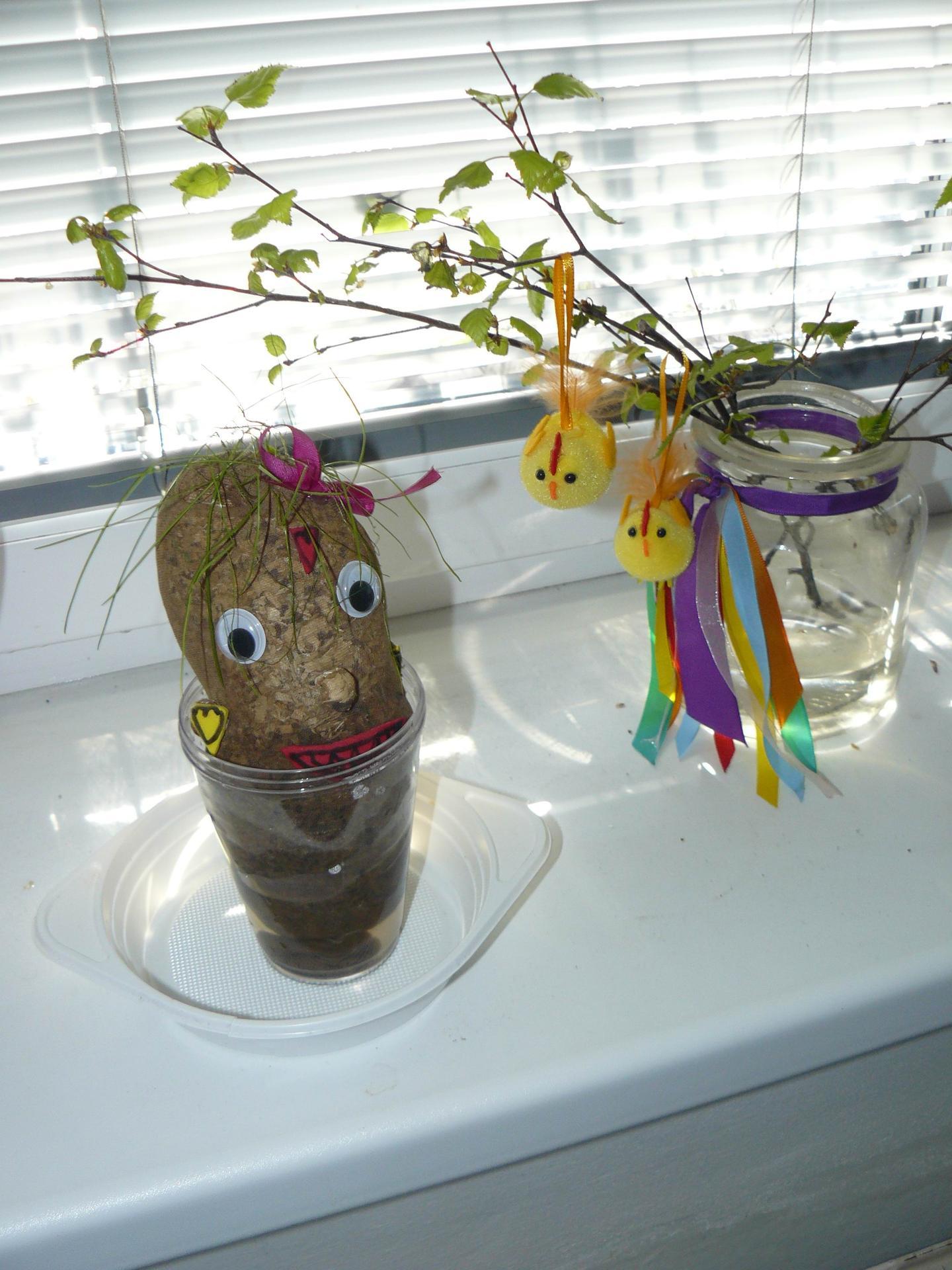 Domov 2020 - Miss potatoe z knihovny