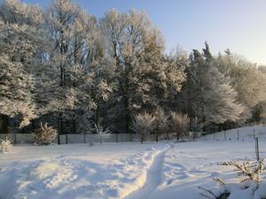 zahrada pod sněhem..