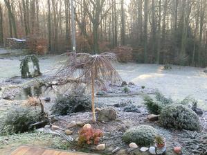 Krásné mrazivé ráno od nás