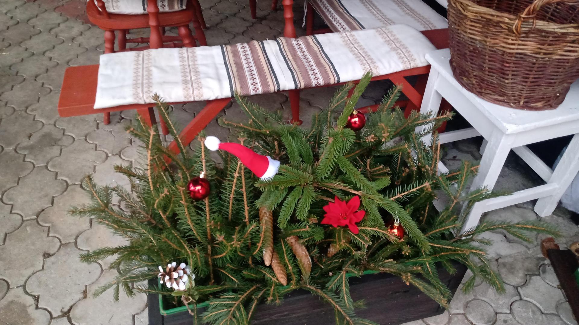 Vianocna vyzdoba a vianocne dekoracie 2020 - Obrázok č. 19