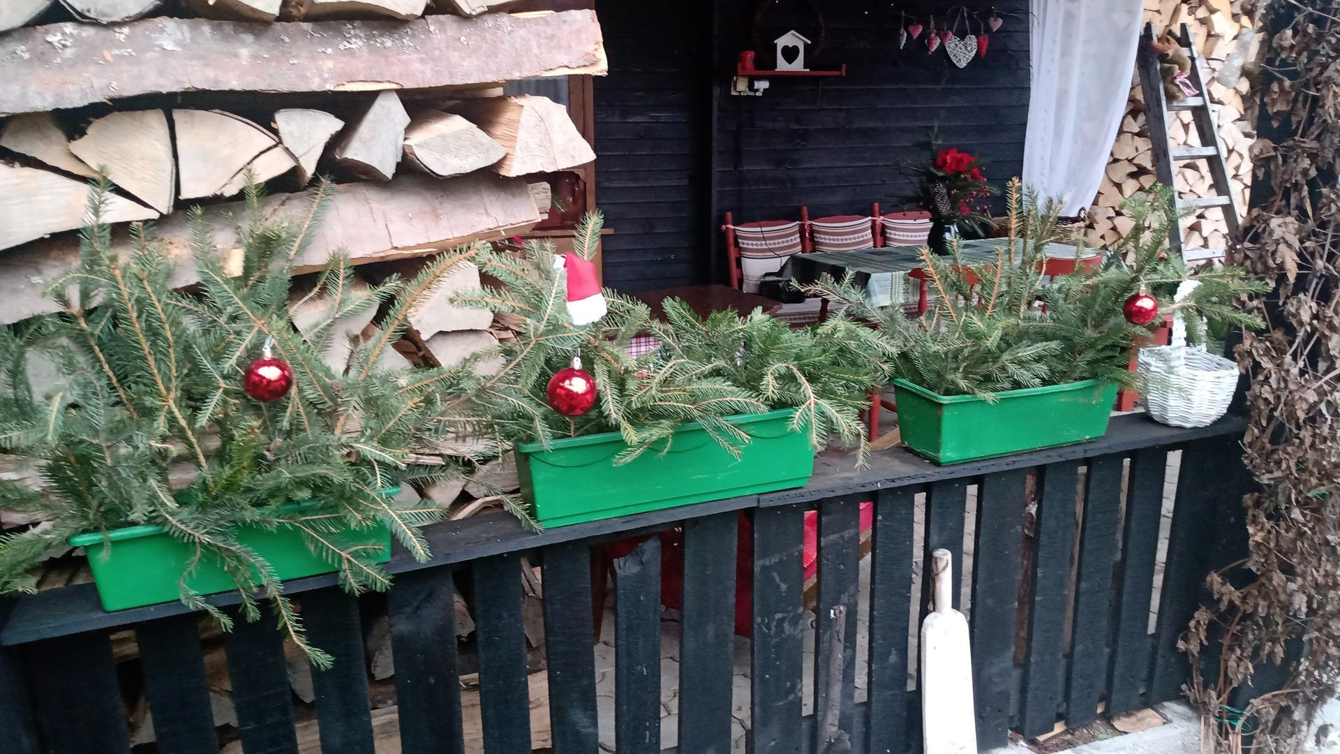 Vianocna vyzdoba a vianocne dekoracie 2020 - Obrázok č. 24