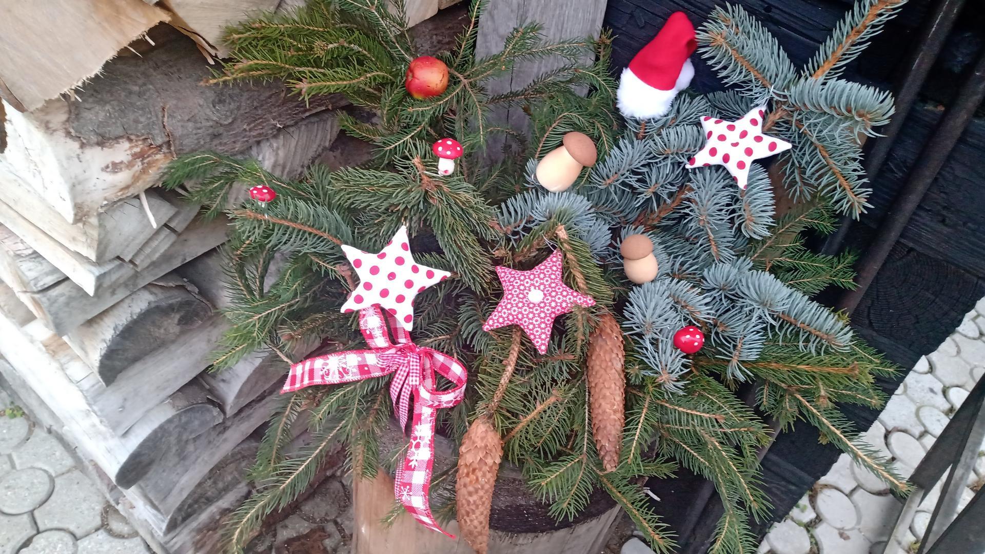 Vianocna vyzdoba a vianocne dekoracie 2020 - Obrázok č. 25