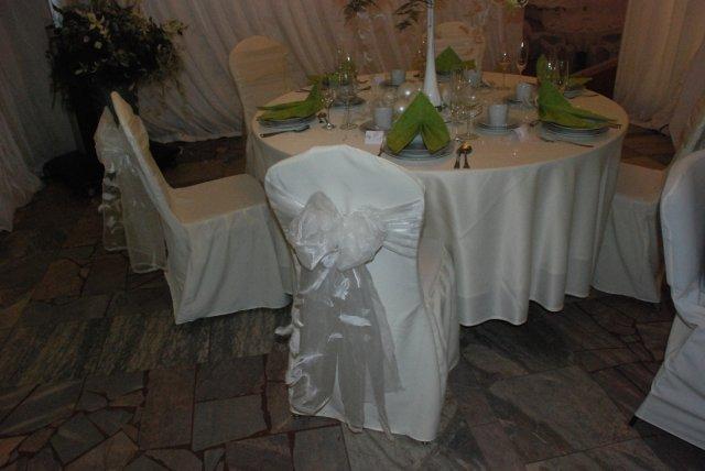 Svadobny Veltrh 2009_vyzdoba_stolovanie_kvety - Obrázok č. 91