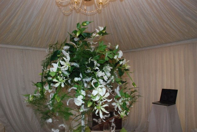 Svadobny Veltrh 2009_vyzdoba_stolovanie_kvety - Obrázok č. 93
