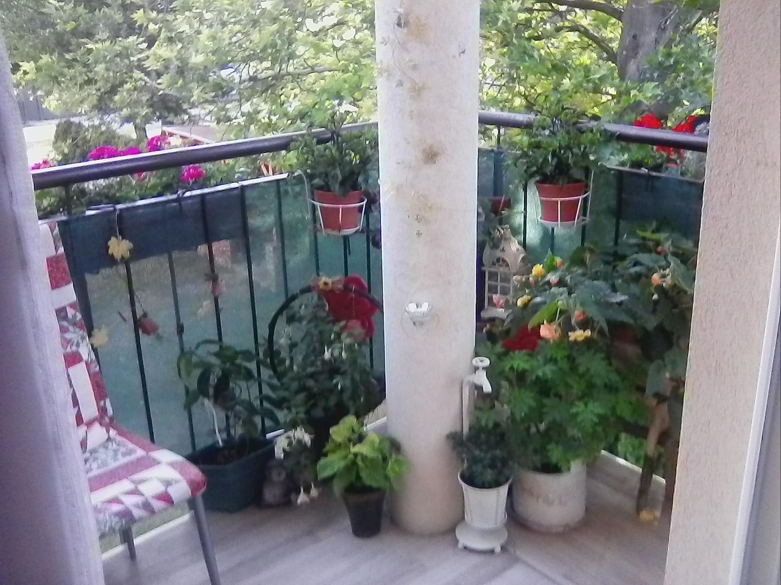 Balkon na vychod,teda viac... - Obrázok č. 1