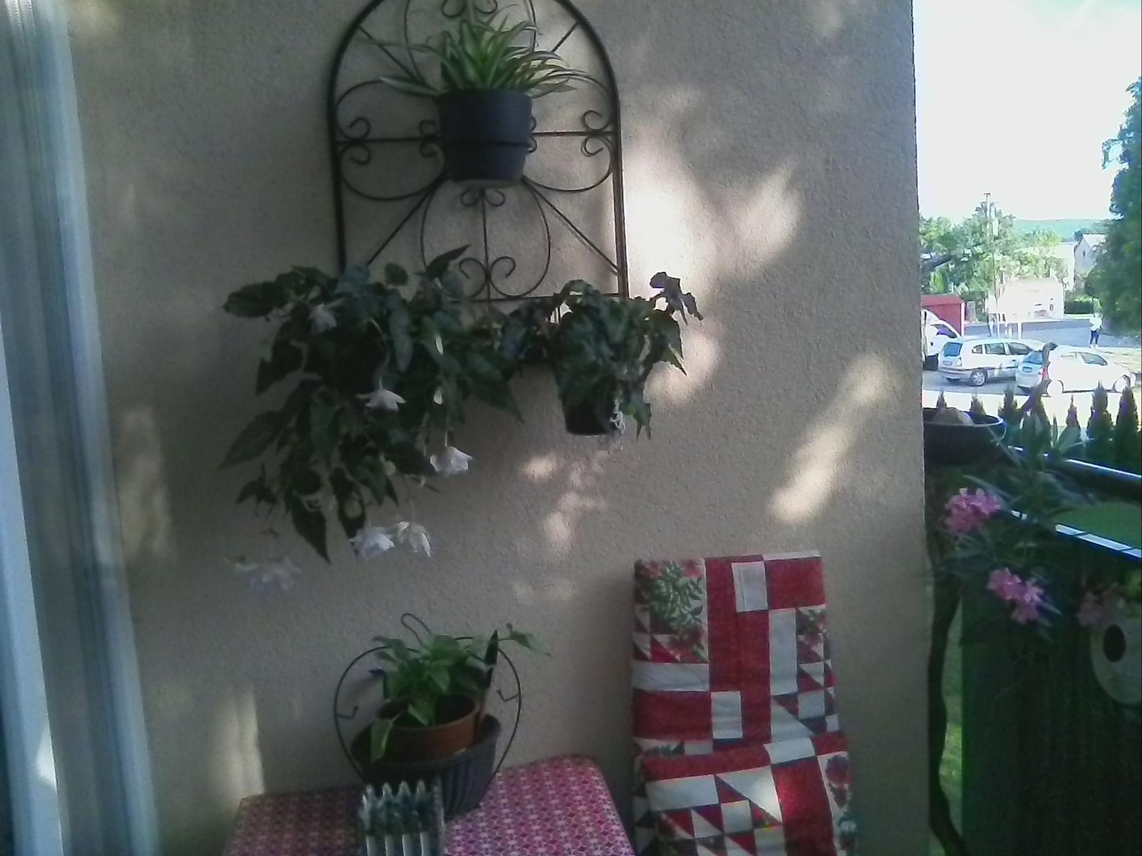 Balkon na vychod,teda viac... - Obrázok č. 2