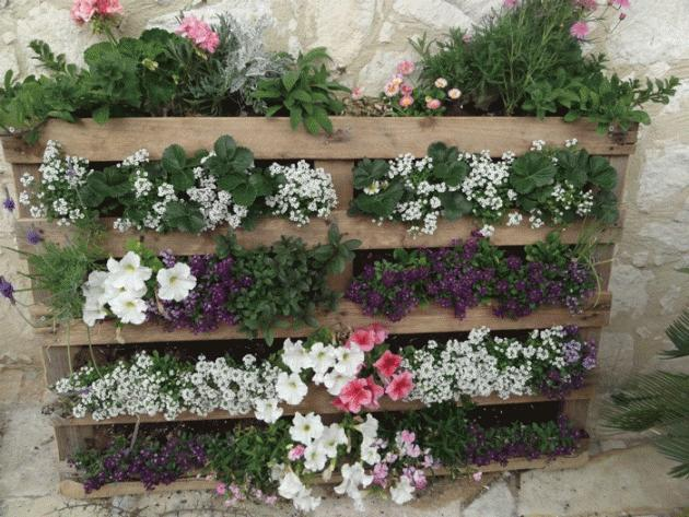Zopar inspiracii na paletove kvetinace - Obrázok č. 1