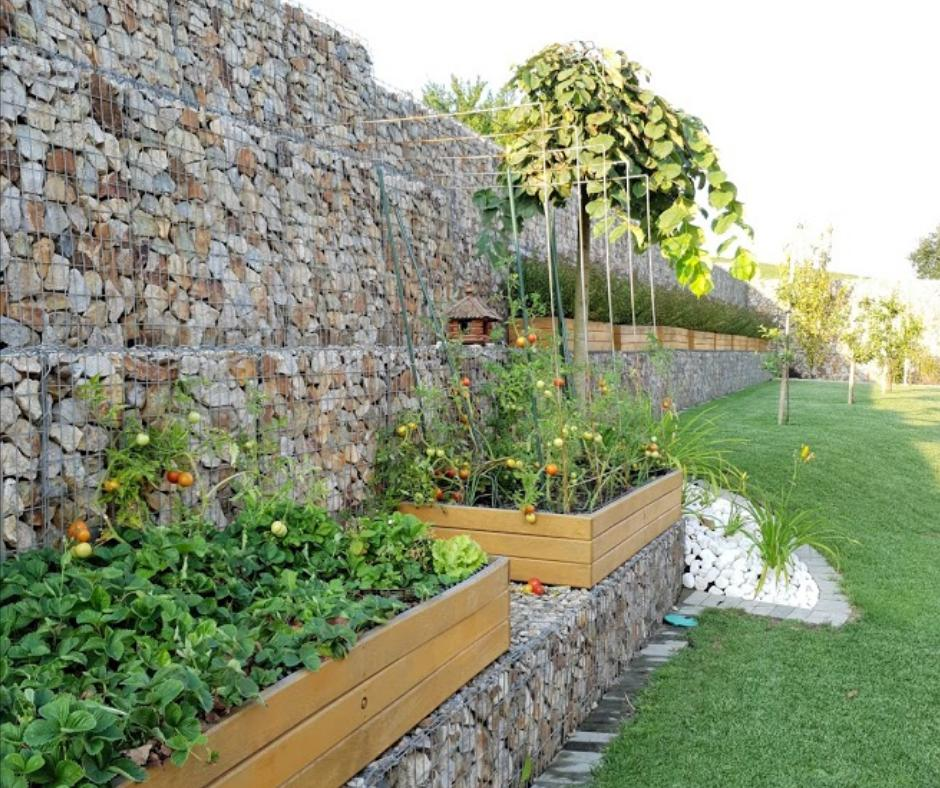Naša záhrada - Obrázok č. 6