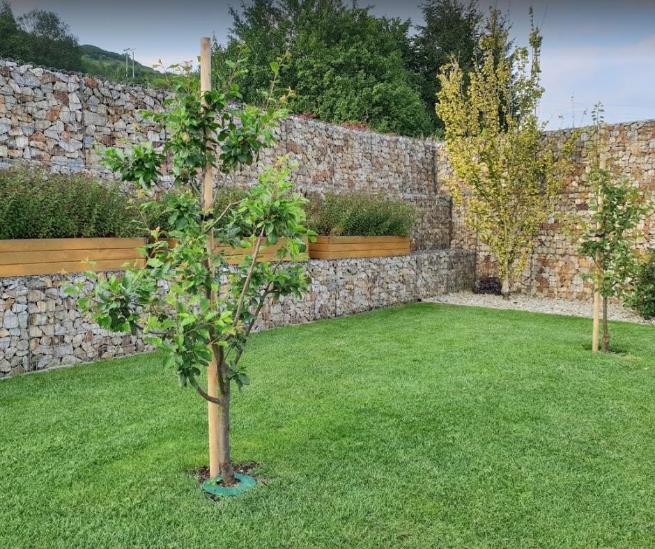 Naša záhrada - Obrázok č. 3