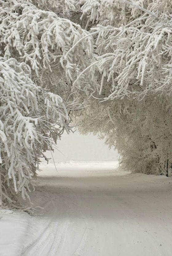 I love white ..... - Obrázek č. 5
