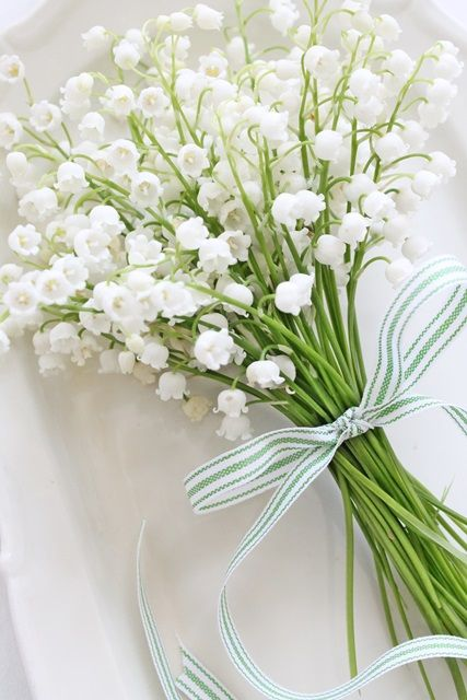 I love white ..... - Obrázek č. 66