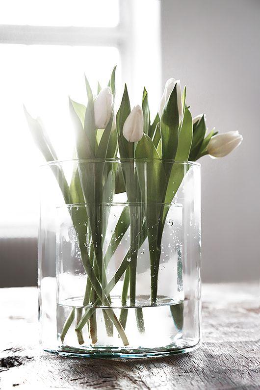 I love white ..... - Obrázek č. 80