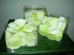 Klasika - zelene lupienky. Inak budu zelene sviecky a servitky. Tolko k vyzdobe