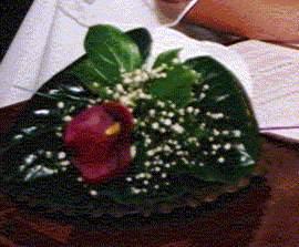 tady jsme měli prstýnky (v květu)