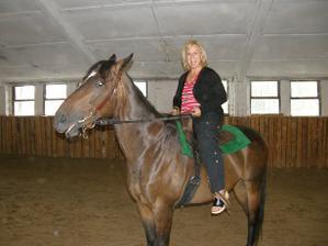 teta na koni