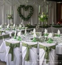 Sedenie hosti v zelenom