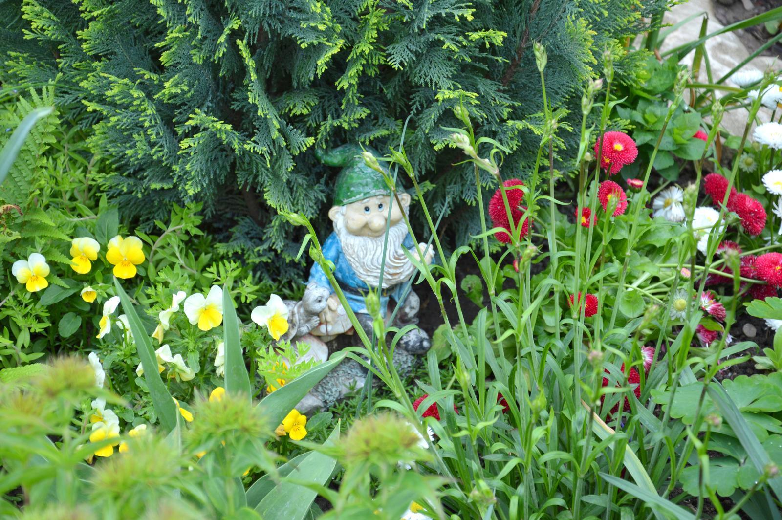 Niečo zo záhradky :-) - Obrázok č. 40