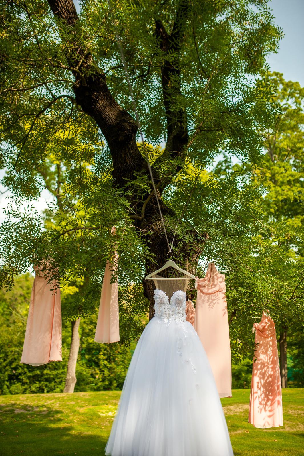 Wedding ♥ - Obrázek č. 7